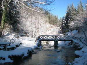 Il ponte per il vecchio mulino (XIV secolo, ancora in funzione)